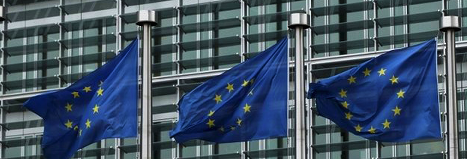 Консултантска дейност по европроекти